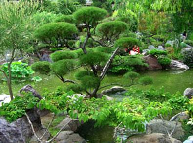Ландшафтный дизайн дизайн сада в